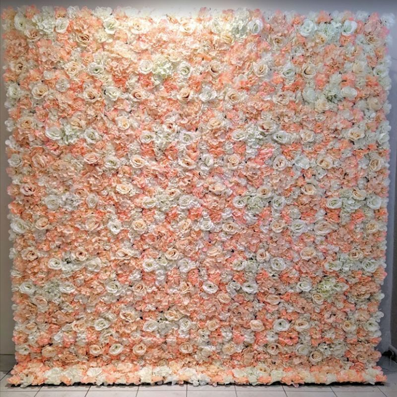 white pink rose flower wall